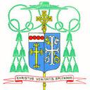 Bishop McManus on papal comment regarding same-sex unions